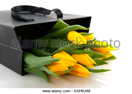 Yellow tulips in black paper bag - Stock Photo