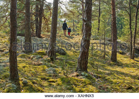 Parent and child walking in the forest, Sweden. - Stock Photo