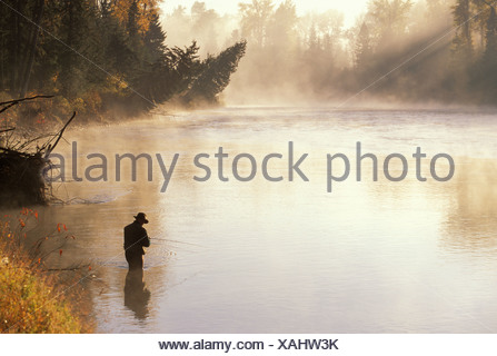 Fly-fisherman tying fly on Elk River in East Kootenays near Fernie, British Columbia, Canada. - Stock Photo