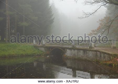Misty autumn morning in park - Stock Photo
