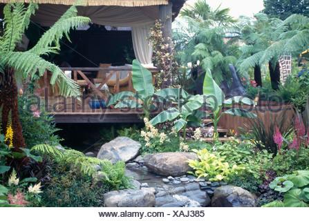 Large tree ferns and banana plants beside stream in oriental garden ...