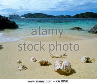 Shells, beach, MB Lagoon Explorer excursion boat at back, Linapacan Strait, Palawan, Mimaropa, Philippines - Stock Photo