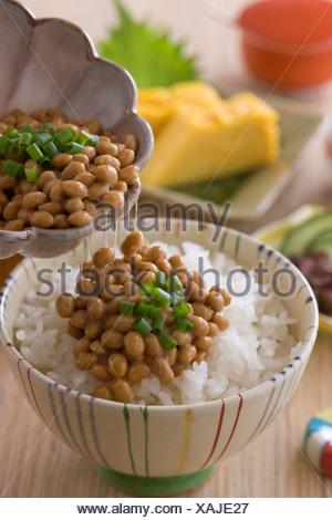 Natto on Steamed Rice - Stock Photo