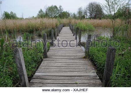 Wooden foot bridge - Stock Photo