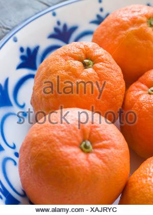 Bowl Of Seville Oranges - Stock Photo