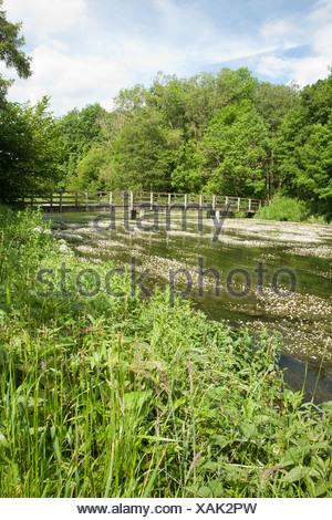 footbridge over the river kennet at chilton foliat near