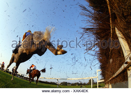 Horse jumping over a hurdle at a horse race, Iffezheim, Germany - Stock Photo
