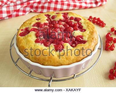 freshly baked currant cake - Stock Photo