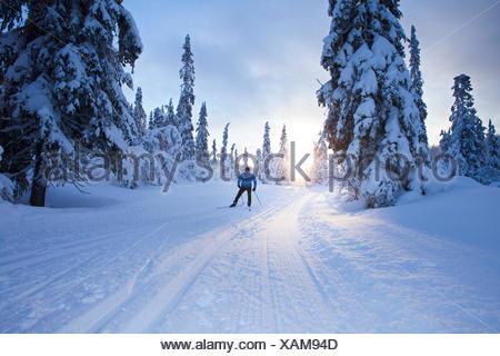 Sweden, Dalarna, Salen, Mature man cross-country skiing at dusk - Stock Photo