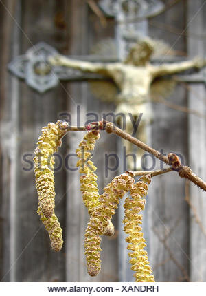 blossom of a tree an cross - Stock Photo
