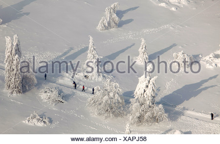 Aerial view, Mt. Kahler Asten, snow-covered pines, walkers, snow, winter, Winterberg, North Rhine-Westphalia, Germany, Europe - Stock Photo
