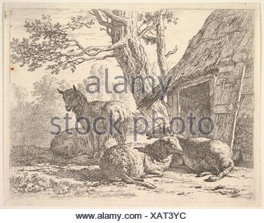 Four sheep, one sheep stands among three others lying on the ground next to a shed with thatched roof and open door. Artist: Karel Dujardin (Dutch, - Stock Photo