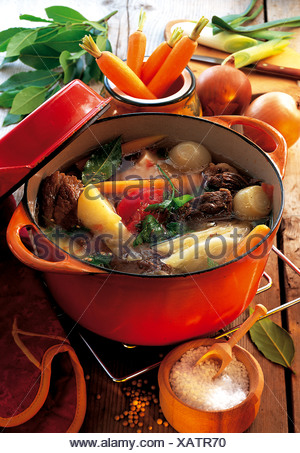 Pot au Feu, boiled beef with root vegetables and cabbage, France, recipe available for a fee - Stock Photo