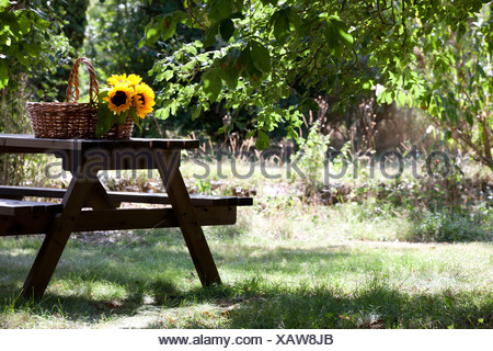 A garden table with a wicker basket and sunflowers on it - Stock Photo