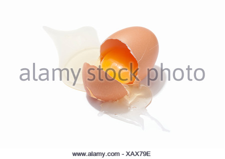 A cracked chicken egg showing yolk and white - Stock Photo