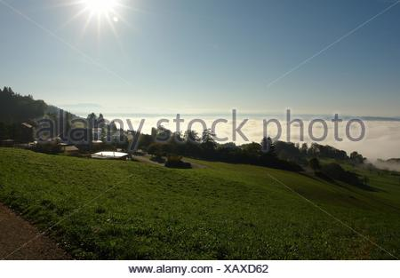 fog above the lake of zurich - Stock Photo