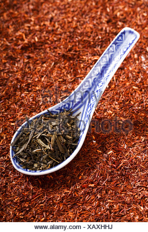 Green tea in Asian spoon, on rooibos tea - Stock Photo