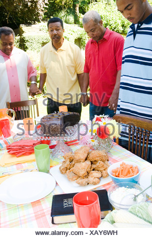 Family holding hands at picnic - Stock Photo