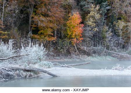 Hoarfrost on the Isar river in autumn, Isar, Geretsried, Upper Bavaria, Bavaria, Germany, Europe
