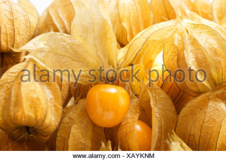 Several Physalis with and without calyxes close up FoodCollection - Stock Photo
