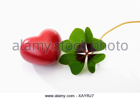 Four leaf clover with heart on white background - Stock Photo
