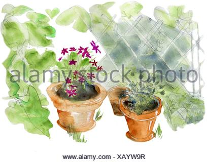 Garden pots, original watercolor sketch. - Stock Photo