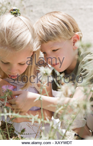 A brother and sister looking at a flower - Stock Photo