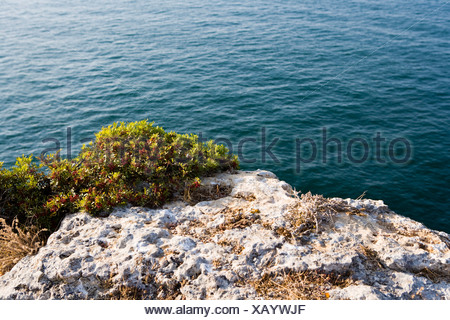 Coastline landscape in Algarve, Portugal, Europe - Stock Photo