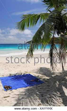 Towels under coconut palm tree on a beach, Anse Lazio, Praslin Island, Seychelles, Africa, Indian Ocean - Stock Photo