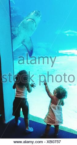Rear View Of Girl And Boy Standing By Glass At Aquarium - Stock Photo