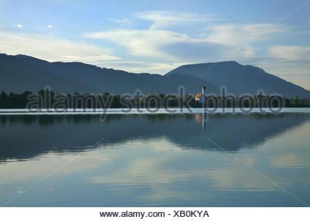 Germany, Bavaria, morning mood, 'Forggensee' (lake) near Füssen, water mirroring, Church of Waltenhofen and Hoher Trauchberg (mountain), - Stock Photo