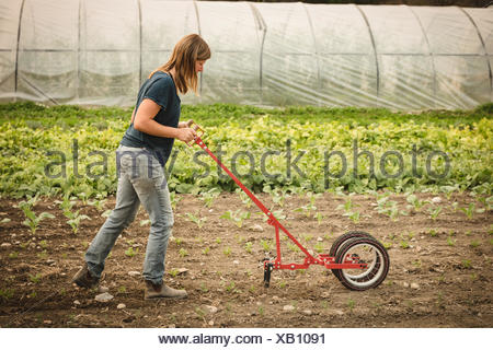 Female farmer using power weedier in the field near green house - Stock Photo