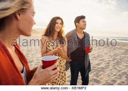 Group of friends having drinks on beach, at sunset - Stock Photo