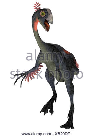 3D digital render of a dinosaur gigantoraptor isolated on white background - Stock Photo
