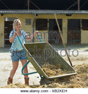 Young female farmer, horse manure, cleaning out, wheelbarrow, Gingen, Baden-Wuerttemberg, Germany, Europe - Stock Photo