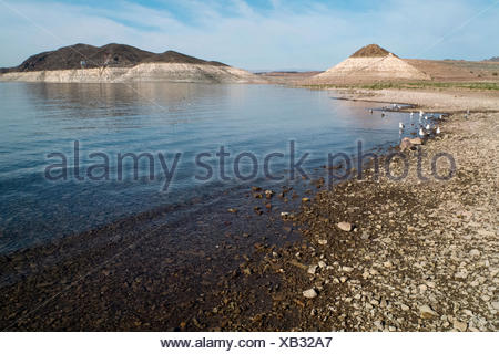 Boulder Beach at low water in Lake Mead National Recreation Area, Nevada. - Stock Photo