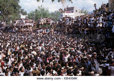 Jallikattu at Pongal festival - Stock Photo