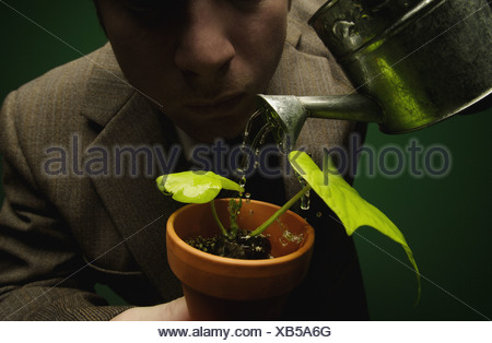 Plant being watered by a man who is watching it closely - Stock Photo