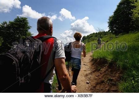 Rear view of three mature hikers hiking up path - Stock Photo
