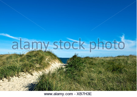Dune path leading to the beach Cape Cod Bay Crosby Beach - Stock Photo