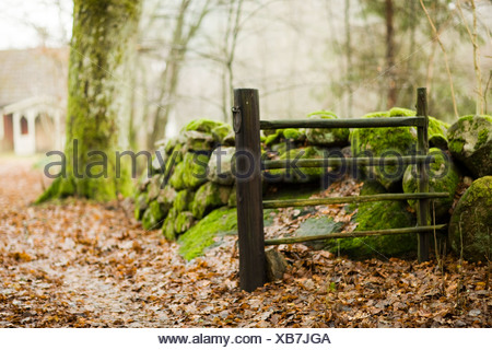 Scandinavian Peninsula, Sweden, Skane, View of moss covered stone and fence with cottage in background - Stock Photo