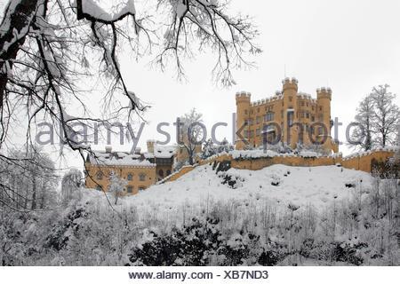 hohenschwangau castle in fussen - Stock Photo