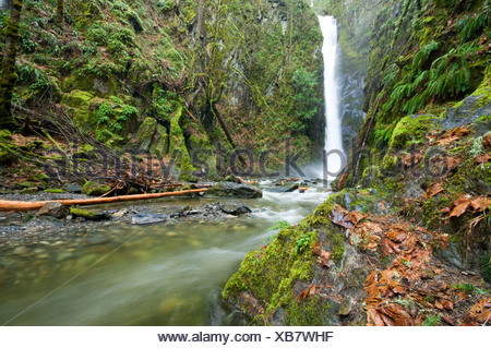 Little Niagara falls in Goldstream Provincial Park, Vancouver Island, British Columbia, Canada. - Stock Photo