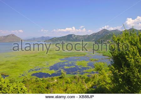 Lake Skadar, Montenegro, Virpazar - Stock Photo