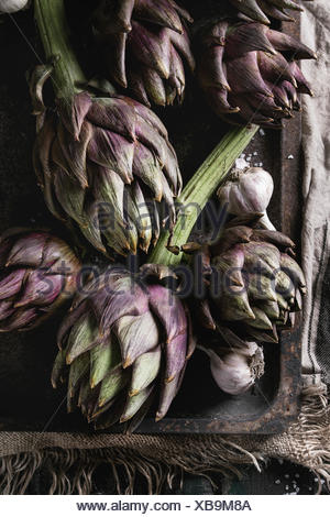 Uncooked whole organic wet purple artichokes with garlic in old rusty oven tray on textile sackcloth over dark wooden background. Rustic style. Top vi - Stock Photo