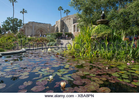 Water lilies in a fountain, with the ruins of the Great Stone Church in background, at Mission San Juan Capistrano, California. The Mission was founded in 1776. - Stock Photo