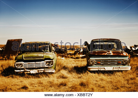 Canada, Junk yard with old US cars - Stock Photo