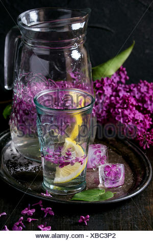 Glass and pitcher of lilac lemonade water  with lemon, ice cubes with lilac flowers and lilac branch on vintage iron tray over b - Stock Photo