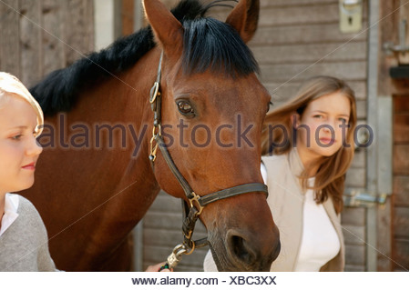 Two young women leading a horse - Stock Photo