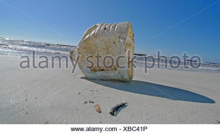 plastic waste on a bathing beach, Spain, Balearen, Majorca, Es Trenc - Stock Photo